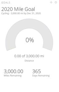 2020 Miles Goal