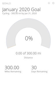January Miles Goal